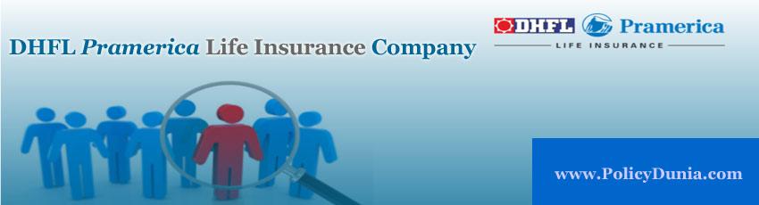 DHFL Pramerica Life Insurance Image