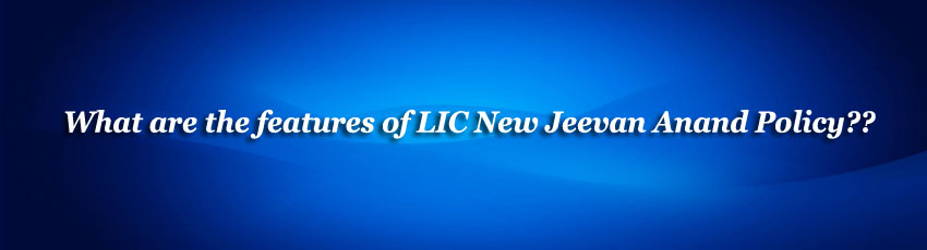 LIC New Jeevan Anand Policy Image