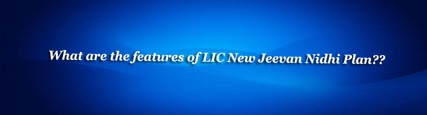 LIC New Jeevan Nidhi Policy