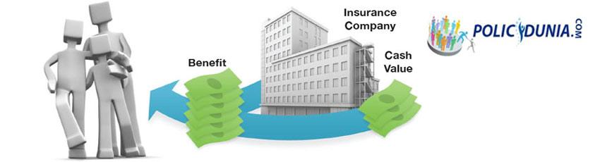 Whole Life Insurance Plans Image
