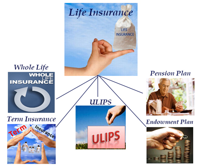 Insurance Policies in India | Best Policies, Types & Reviews