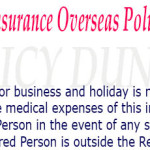 National insurance overseas travel policy for Business and Holiday image
