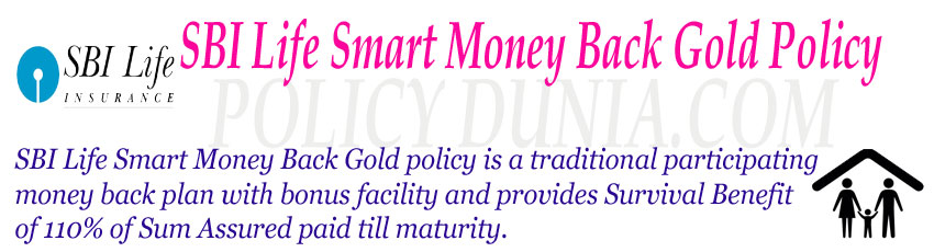 SBI Life Smart Money Back Gold policy image