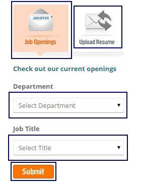 Apollo munich job openings